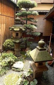 Tsuboniwa i giardini giapponesi in miniatura roma for Giardini zen giapponesi