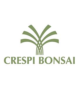 Crespi Bonsai